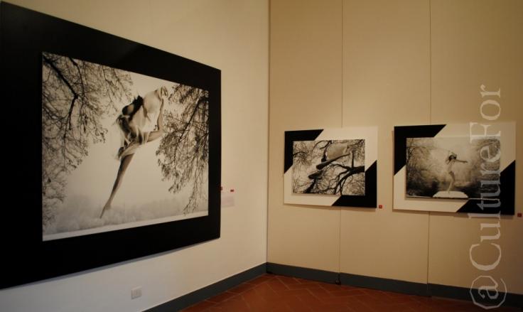 Anima.Re @Serrone, Monza_www.culturefor.com