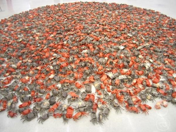 Ai Wei Wei al PAMM @Miami _ www.culturefor.com