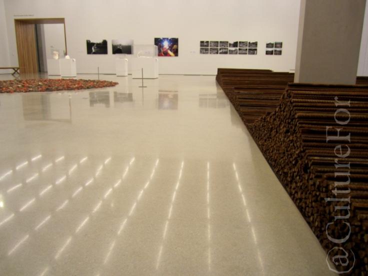 Ai Wei Wei al PAMM @Miami _ www.culturefor.com-9