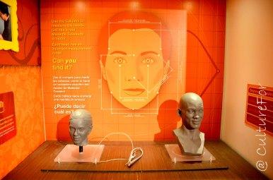 Los Angeles e il cinema_www.culturefor.com