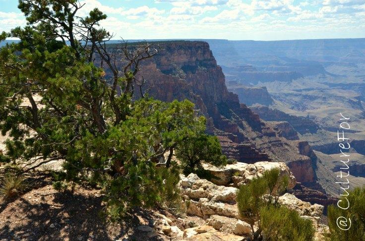 Grand Canyon_www.culturefor.com12