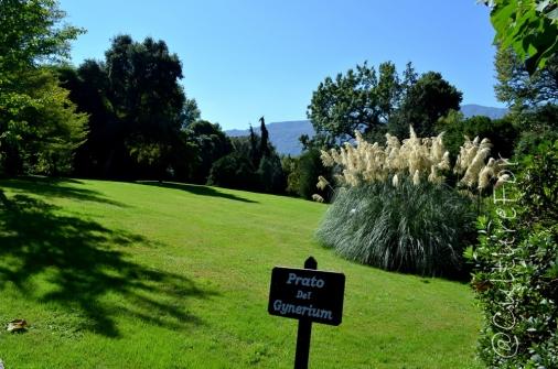 Le Isole Borromee @Lago Maggiore _ www.culturefor.com