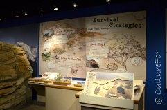 Visitor Center_www.culturefor.com