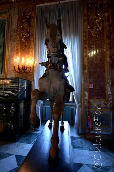 L'Armeria Reale @Torino _ www.culturefor.com-7