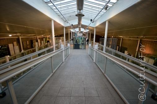 Museo Archeologico @Torino _ www.culturefor.com-20