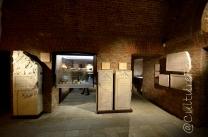 Museo Archeologico @Torino _ www.culturefor.com-9