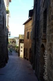 San Gimignano e le sue torri @Toscana _ www.culturefor.com-11