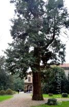 Villa de Capitani @Osnago _ www.culturefor.com-5