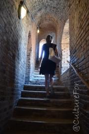 Cremona_ _ www.culturefor.com-2 (10)