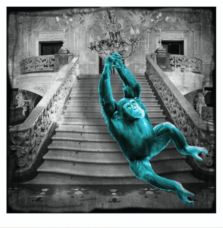 Inter Art_Lars Tunebo_scimmia
