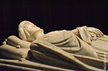 Cattedrale San Martino (11)