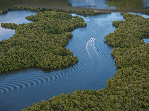everglades-aerial-boat_91382_600x450